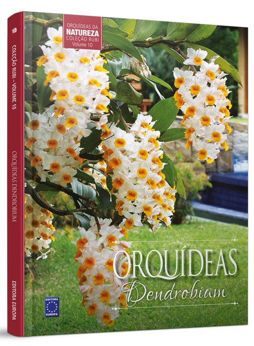 Coleção Rubi: Orquídeas Dendrobium