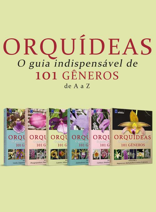 Coleção Orquídeas - 101 Gêneros de A a Z