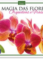 A Magia das Flores – Orquídeas e Frases