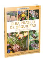Guia Prático de Orquídeas: Regras Básicas