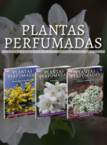 Coleção Plantas Perfumadas – 3 Volumes