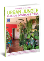 Urban Jungle – Plantas Dentro de Casa