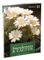 Enciclopédia de Suculentas e Cactos – Volume 11